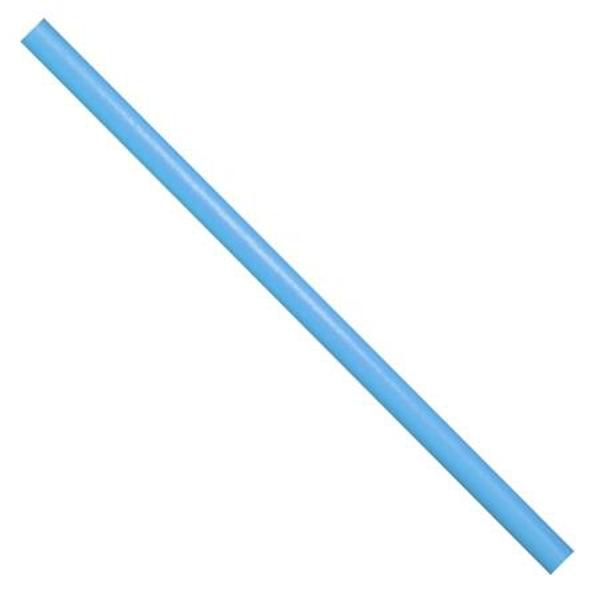 Pěnová tyč Worm - modrá